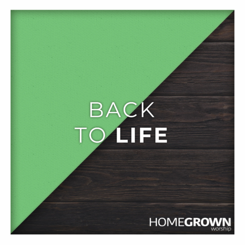 Homegrown Worship - Back To Life