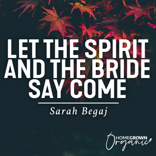 Let The Spirit And The Bride Say Come