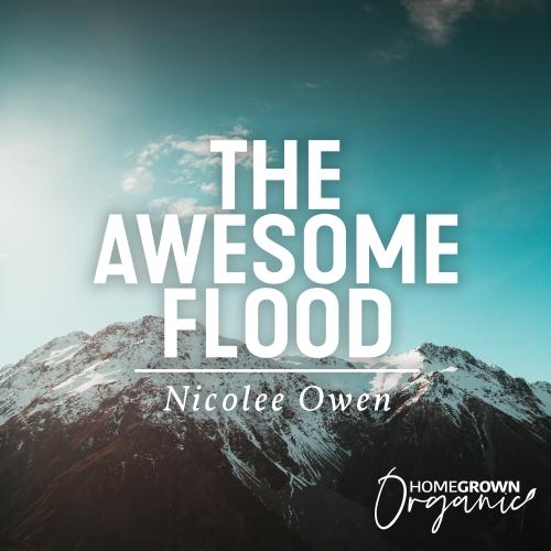 The Awesome Flood
